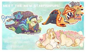 2017 Vday Starfishpups! by Colonels-Corner