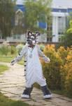 Cat partial fursuit with kigu by KrafiCat