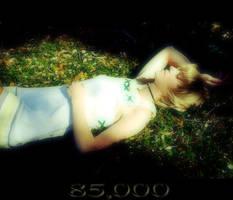 85,000 Hits by ThePrincessZelda