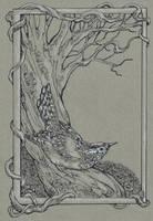 The Wren by Dreoilin