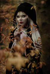 In dunklen Waeldern by LadyDeathDemon