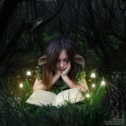 A Fairy Tale by temporary-peace
