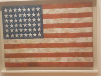 USA flag in the MoMa  by pyrus125680