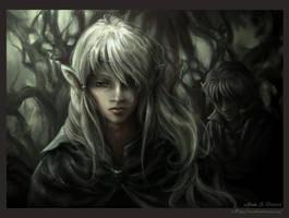 The Prince's Shadow by Saimain