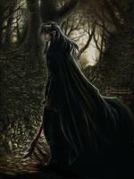 Cloak of Shadows by Saimain