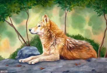 Legolas the Wolf by Khalliys