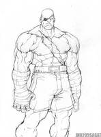 Street Fighter Sagat by NgBoy