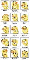 Emotions meme: Electuroo by pridark