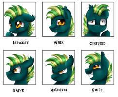 Emotions meme: Starry Night by pridark