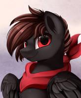 Twitter Raffle Winner: Shadow Hawk by pridark