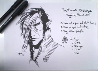 Pen/marker challenge by Springouille