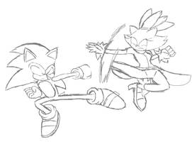 Sonic vs Blaze WIP by PandaKillerGao