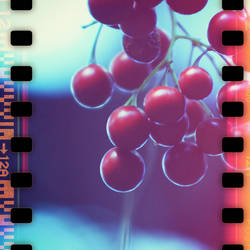 sprocket berry by b2spiritcat