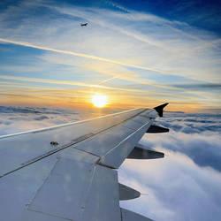 Blue flight by marcopolo17