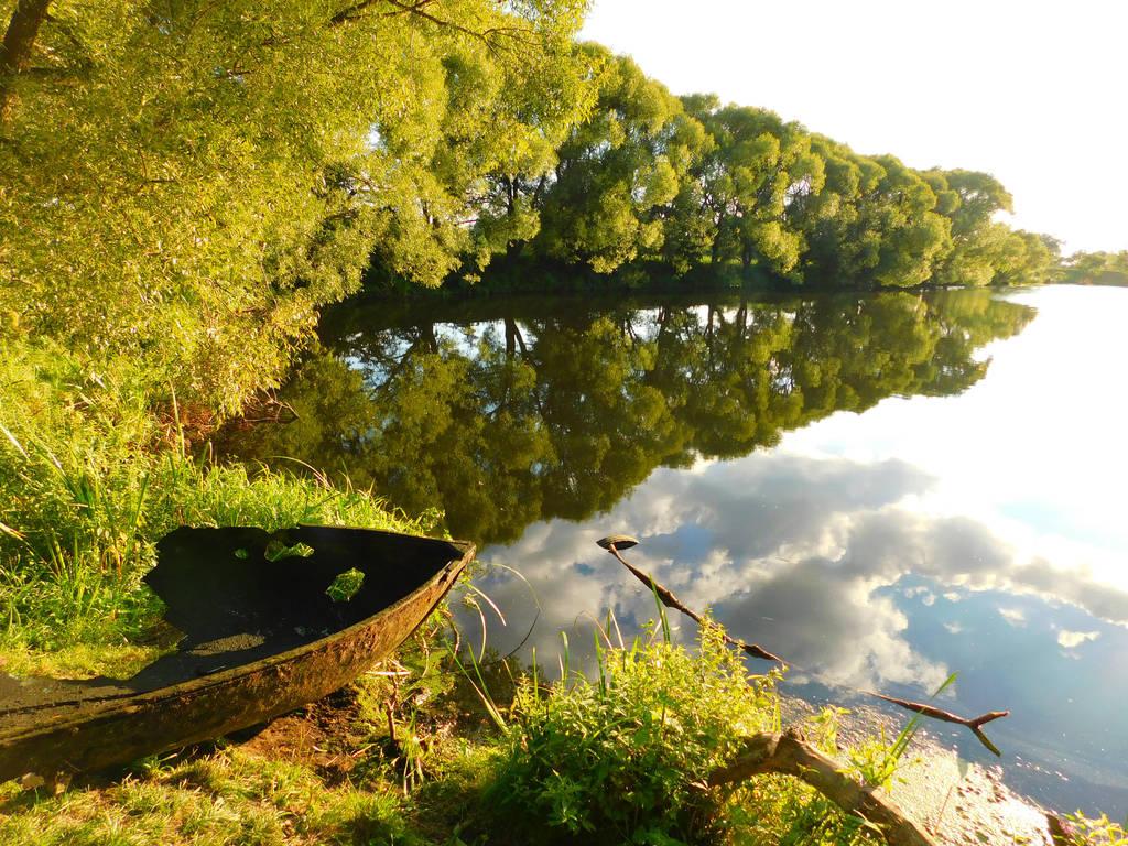 The pond by vch41048