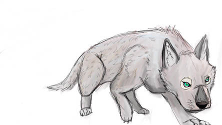 BABY WOLF  SILVER THE WOLF by steel-the-black-bird