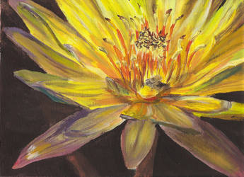 water lily painting by pyrochic127