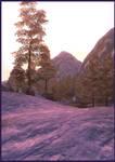 Cold Dawn by A-rien