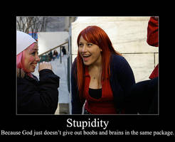 Motivational - Stupidity by arwennn