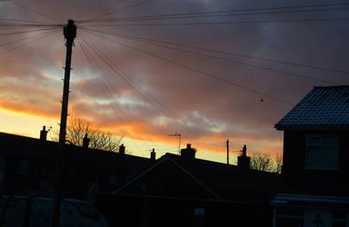 Morning Light 2 by Shirley-Agnew-Art