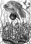 Releasing Lady Hawk, contrast by marcgosselin