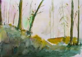 Woods' awakening by rollarius55