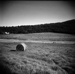 Hay Bale by vetal-vetal