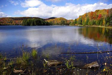 Pond by vetal-vetal