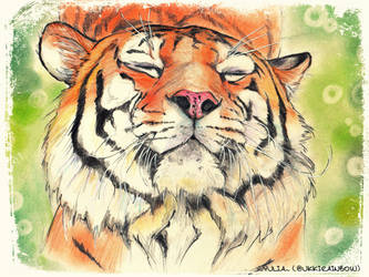 Lovely tiger!! by UkkiRainbow