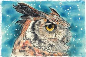 Owl by UkkiRainbow