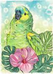 Parrot by UkkiRainbow
