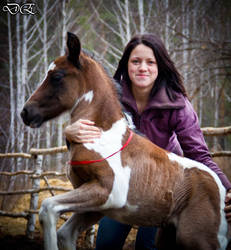 Alena and baby horse by Gladhnes