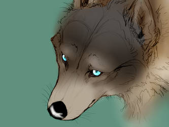 Random coloured pic 1 Wolf by JaggedBird