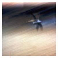 Gravity Is Not A Spoiler by EintoeRn