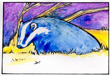 .badgerbadgerbadger. by CheshireSmile