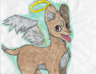 Ren the Chihuahua by dogsdrool80
