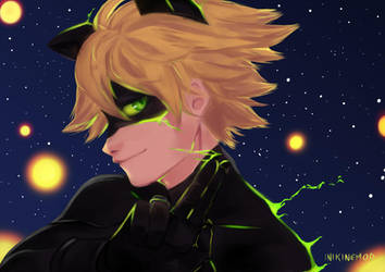 Miraculous: Chat noir by Inikinemod
