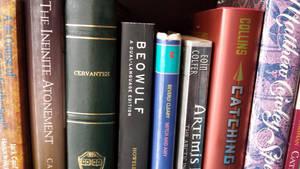 Book Club Books by JenniBeeMine