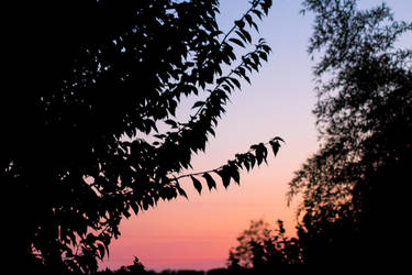 Sunset by nonphotogenique