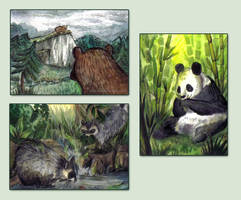 I love bears! by beareen