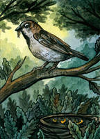 The early bird by beareen