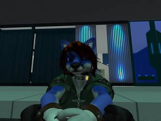 Blue Fox of Fox Haven by zackcdlvi