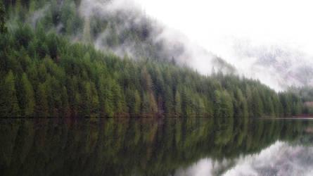 Wallace Lake Reflection by cjosborn