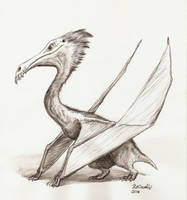 Winged Creature Sketch by K-Bladin