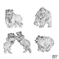 Bear sketches 1 by K-Bladin