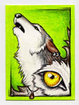 ACEO -Yellow Eyes- by CrescentMoon
