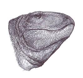 Dimetrodon by Forbidding