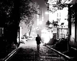 Stranger In The Night by ebrutuhan