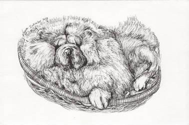 Inktober 2018 drawing 10- lounging Pomeranian by MsAlayniousCreations
