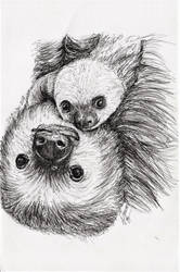 Inktober 2018 drawing 20- mama sloth and baby by MsAlayniousCreations